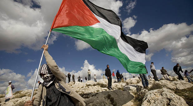 Palestinian with flag