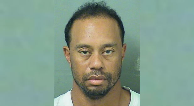 Tiger Eldrick Woods appears in a booking photo released by Palm Beach County Sheriff's Office in Palm Beach, Florida.